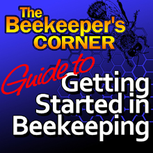 Getting Started In Beekeeping