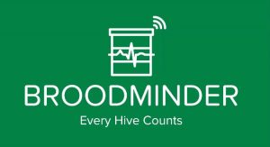 Broodminder Monitoring Devices