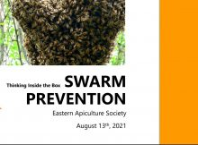 Swarm Prevention cover image
